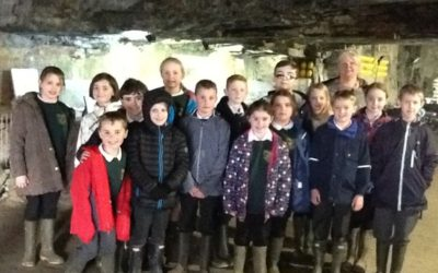 Trewidland's fascinating trip to Carnglaze Caverns