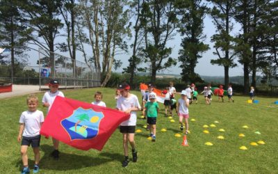 Cricket World Cup comes to Dobwalls Primary