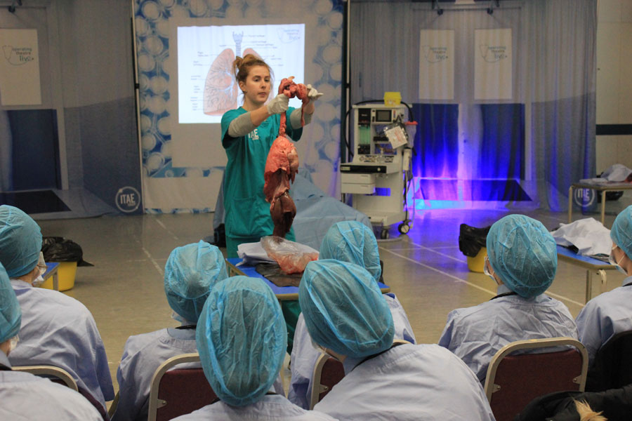 SMART students get hands on with Operating Theatre Live
