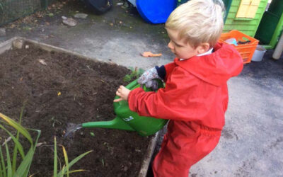 Trewidland Primary School 'Giving Mother Nature a hand'.