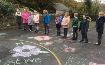 Remembrance Day and Trewidland Primary and Pre-School